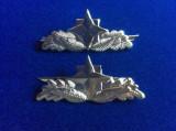 Insigne militare -Semne de armă - Serviciul Roman de Informatii -SRI (argintii)