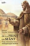 De la print la sfant. Viata Sfantului Sava Arhiepiscopul Serbiei/Sfantul Nicolae Velimirovici