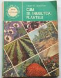 Cum se inmultesc plantele - Valeriu Zanoschi