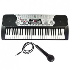 Orga electrica cu 54 clape, USB si microfon inclus