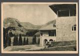 CPIB 15541 CARTE POSTALA - MUNTII BUCEGI, CABANA PESTERA, RPR, 1954