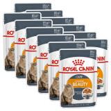 Cumpara ieftin Royal Canin Intense Beauty Jelly 12 x 85 g