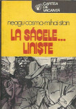 La sacele liniste - Neagu Cosma-Mihai Stan