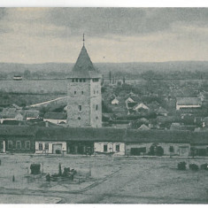 4273 - SALONTA, Bihor, Market, Romania - old postcard - unused, Necirculata, Printata