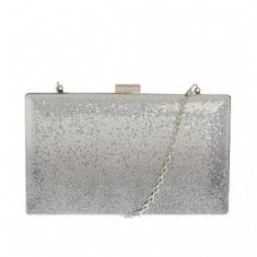 Clutch dreptunghiular, argintiu