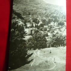 Ilustrata Olanesti - Vedere circulat cu tete-beche -fluturi- triunghiular1966