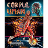 Corpul uman cu aplicate gratuita Editura Kreativ