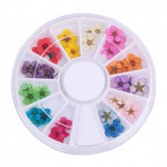 Carusel decorativ ornament FIMO pentru unghii, multicolor