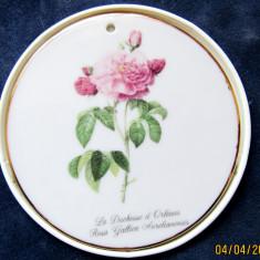 Medalion La Duchesse d'Orleans by Pierre-Joseph Redoute.Portelan Kenzan Japonia.