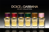 Dolce&Gabbana Velvet Wood EDP 50ml for Мen fără de ambalaj