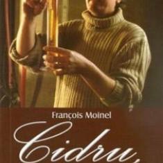 Cidru, vin de pere, rachiu si calvados/Francoise Moinel