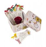 12 Motive, semne de carte personalizate, cu un trandafir rosu criogenat, diverse modele, multicolor