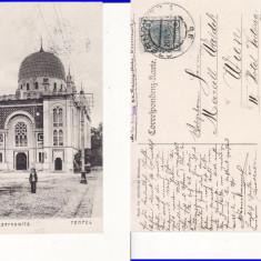 Cernauti ( Bucovina )-  rara-Sinagoga, iudaica-edit. Leon Konig, Circulata, Printata