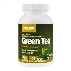 Green Tea 500mg, 100cps, Jarrow Formulas