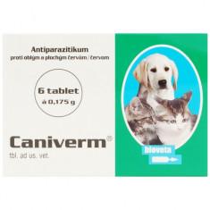 Caniverm 0.175g (pisici si caini talie mica) 6 tablete