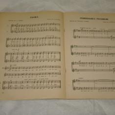 Cantece si coruri pentru copii vol. II - Editura Muzicala - 1980