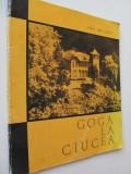 Goga la Ciucea - Ion Miclea