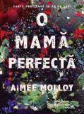 O mama perfecta/Aimee Molloy