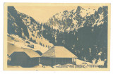 1372 - BUCEGI Mountain, cottage - old postcard, CENSOR, real PHOTO - used - 1917