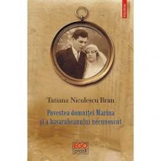 Povestea domnitei Marina si a basarabeanului necunoscut (ebook)
