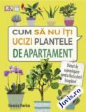 Cum să nu-ți ucizi plantele de apartament