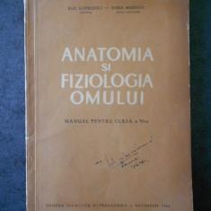 EMIL SANIELEVICI - ANATOMIA SI FIZIOLOGIA OMULUI. MANUAL PENTRU CLASA A VI-A