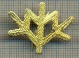 Y 1806 INSIGNA - MILITARA -SEMN DE ARMA -VANATORI DE MUNTE  -PENTRU COLECTIONARI