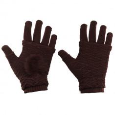 Manusi iarna pentru Touchscreen 2 in 1 brown