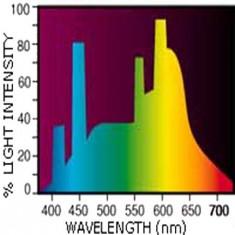 Neon acvariu SUN GLO, T8, 30W, Hagen, 91x2,5 cm, A1593