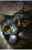 Pisicile Razboinice Vol. 8: Rasarit de luna