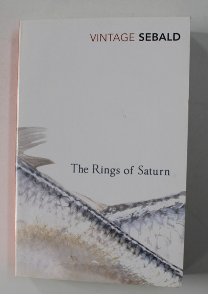 THE RINGS OF SATURN by W, G. SEBALD , 2002