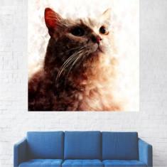 Tablou Canvas, Pictura Alb-Portocalie - 30 x 30 cm
