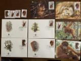 Indonezia - urangutan - serie 4 timbre MNH, 4 FDC, 4 maxime, fauna wwf