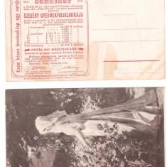 1906 - Bilet de loterie Timisoara - carte postala