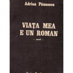 Viata mea e un roman - poezii