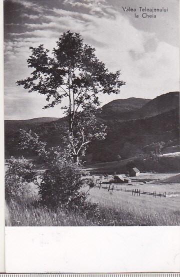 bnk cp Valea Teleajenului la Cheia - Vedere - circulata