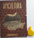 Revista Apicultura 6/1963