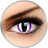 Crazy Purple Dragon - lentile de contact colorate violet anuale - 360 purtari (2 lentile/cutie)