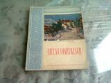 STEFAN DIMITRESCU - MAESTRII ARTEI ROMANESTI
