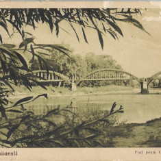 """Carte postala Călimănești - Podul peste Olt la """"Ostrov"""" interbelica"""