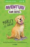 Aventuri la Ham Hotel. Marley cel murdar. Nivelul 5/Shelley Swanson Sateren, Deborah Melmon