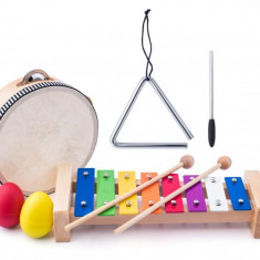 Set Woodyland 4 instrumente muzicale