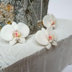 Set orhidee pe argint