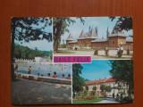 Baile Felix - imagini multiple - carte postala necirculata, Fotografie