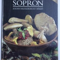 LA REGION DE SOPRON , texte de ZOLTAN HALASZ , photographies de KAROLY HEMZO , 1989