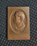 Placheta 1922 - Stefan Minovici - Chimie - Medicina - per.  regalista - medalie