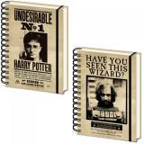 Agenda 3D licenta Harry potter - Harry Potter & Sirius Black