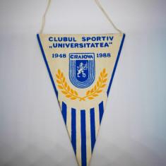 Fanion de colectie Universitatea Craiova. 40 ani. 1948-1988. Pictat manual!