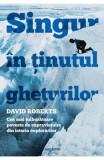 Singur in tinutul gheturilor - David Roberts