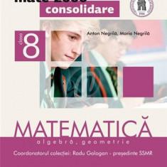Matematica - Algebra, geometrie clasa a VIII-a, partea I